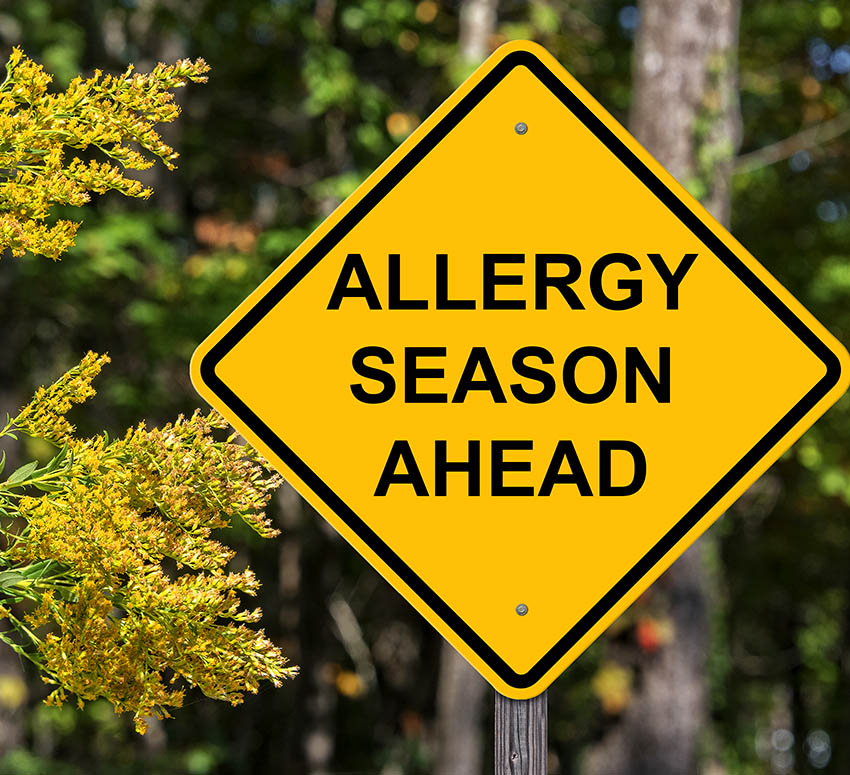 What Causes Seasonal Allergies?